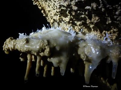 Grotte Roche; Vercors (Isère); spéléo avec Cap Oupakap Nature